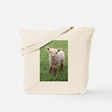 Sweet Lamb Tote Bag