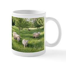Grazing Woolies Mug