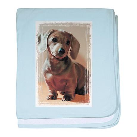 Dachshund Puppy Infant Blanket