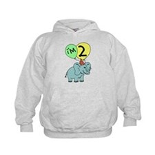 Second Birthday Elephant Hoody