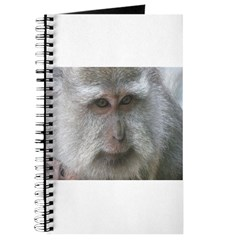 Monkey Mother 3 Journal