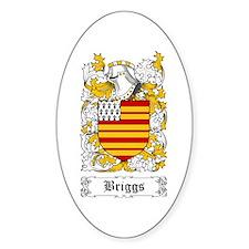 Briggs Decal