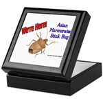 Stink Bug Keepsake Box