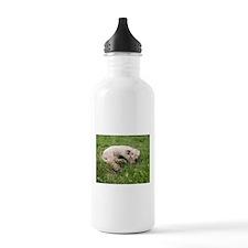 Sleepy Baby Water Bottle