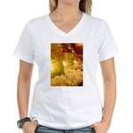 Singapore Temple Offering Lam Women's V-Neck T-Shi
