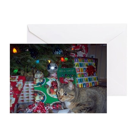 Another Christmas Kitty Greeting Cards (Pk of 20)