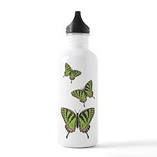 Celtic Swallowtail Water Bottle