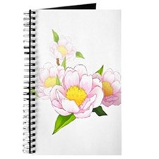 Peony Moth Orchid Journal