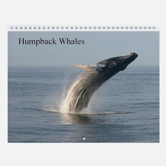 Wall Calendar-Whales (Humpbacks)