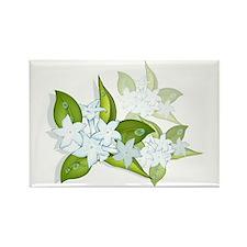 jasmine Flowers artwork Rectangle Magnet