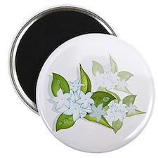"jasmine Flowers artwork 2.25"" Magnet (10 pack)"