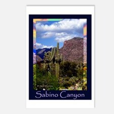 Sabino Canyon Postcards (Package of 8)