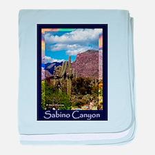 Sabino Canyon baby blanket