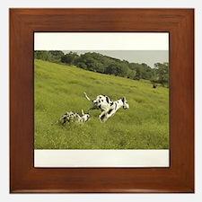 """Harlequin """"Meadow Run"""" Framed Tile"""