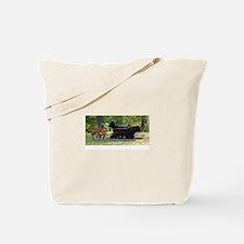 More Team Draft Tote Bag