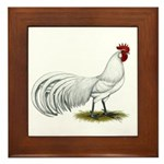 Phoenix White Rooster Framed Tile