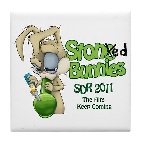 SDR 2011 Coaster