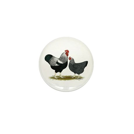 Plymouth Rock Penciled Chic Mini Button (100 pack)