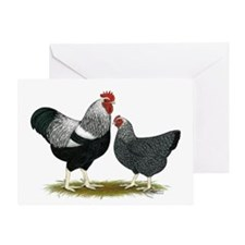 Plymouth Rock Penciled Chicke Greeting Card