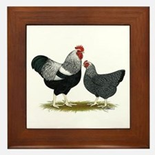 Plymouth Rock Penciled Chickens Framed Tile