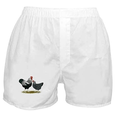 Plymouth Rock Penciled Chicke Boxer Shorts