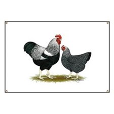 Plymouth Rock Penciled Chicke Banner