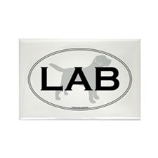 LAB II Rectangle Magnet