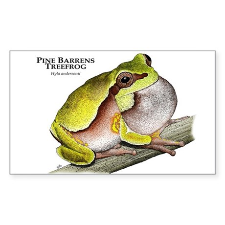 Pine Barrens Treefrog Sticker (Rectangle)