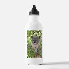 Helaine's Koala Bear Water Bottle