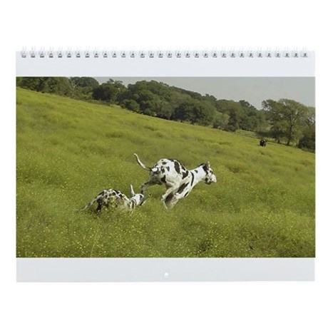 "Harlequin ""Meadow Run"" Wall Calendar"