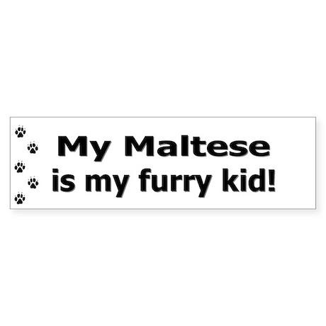 Maltese Furry Kid Bumper Sticker