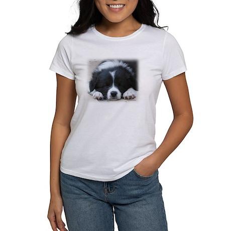 Sleeping Border Collie Puppy