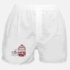 Bird House Boxer Shorts