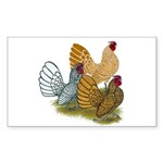 Sebright Rooster Assortment Sticker (Rectangle 50
