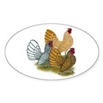 Sebright Rooster Assortment Sticker (Oval 10 pk)