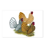 Sebright Rooster Assortment Postcards (Package of