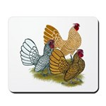 Sebright Rooster Assortment Mousepad