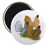 Sebright Rooster Assortment Magnet