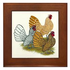 Sebright Rooster Assortment Framed Tile