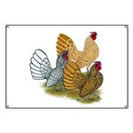 Sebright Rooster Assortment Banner