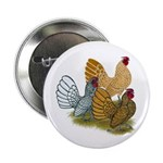 "Sebright Rooster Assortment 2.25"" Button"