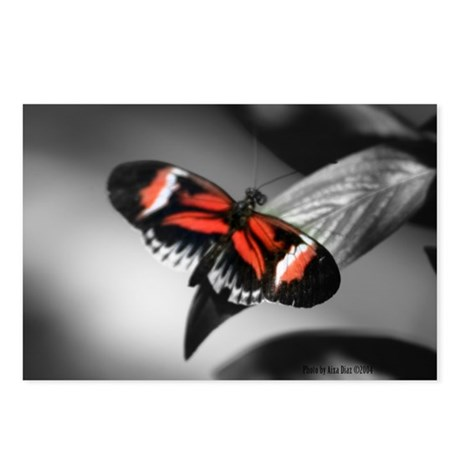 Red Butterfly Postcards (Package of 8)