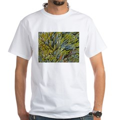 Kelp on a Rock Shirt