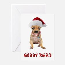 Christmas Chihuahua Greeting Cards (Pk of 10)