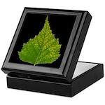 Fall Birch Leaf Keepsake Box