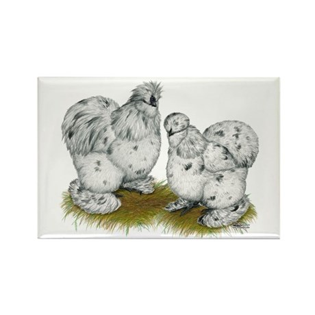 Silkies Splash Chickens Rectangle Magnet (10 pack)