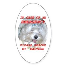 Maltese Dog Oval Decal