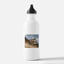 Cape Cod Beachcombers (1) Water Bottle