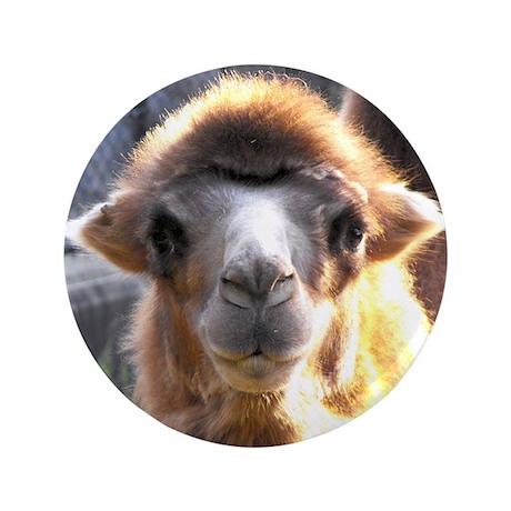 """Bactrian Camel 3.5"""" Button"""