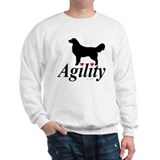 Agility goldens Adult